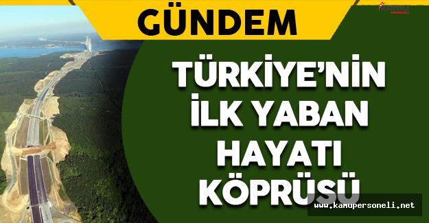 Türkiye'de Bir İlk Olacak !