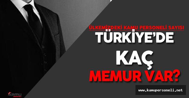 Türkiye'de Toplam Kaç Memur Görev Yapıyor? (Kamu Personeli Sayısı)