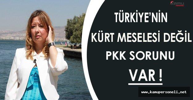 Türkiye'nin Kürt Değil PKK Sorunu Var !