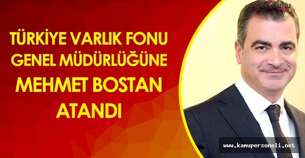Türkiye Varlık Fonu AŞ Genel Müdürlüğüne Mehmet Bostan Atandı