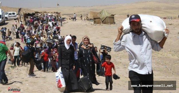 Türkiye'ye Yasa Dışı Yollardan Girmeye Çalışan Bin 594 Kişi Yakalandı