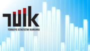 Türkiye İstatistik Kurumu Uzmanlığı Yönetmeliğinde Değişiklik Yapıldı