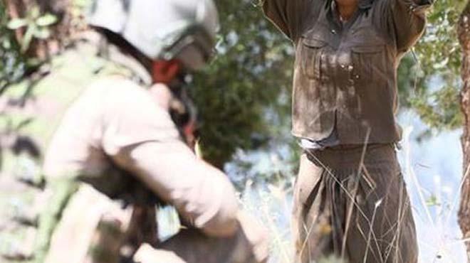 İçişleri Bakanlığı açıkladı! 215 terörist teslim oldu