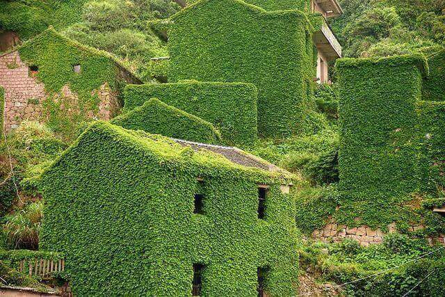 Doğanın Sahiplendiği Köy