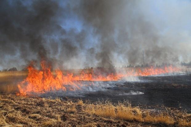 Son Dakika: Diyarbakır'da Yangın !