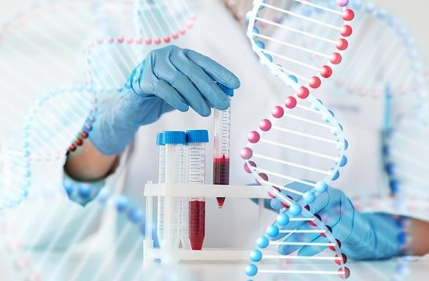 Yapılan Araştırmalar Sonucunda Altıncı His Geni Bulundu