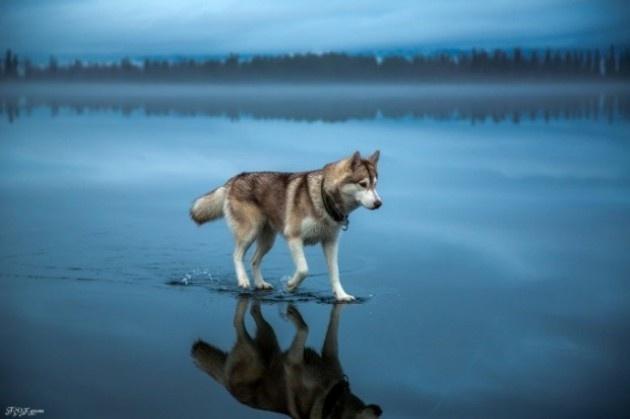 Enteresan güzellikte doğa fotoğrafları