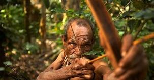 Son Kabile: Ağaçlarda Yaşıyorlar!