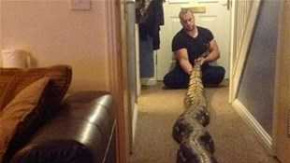 Hayvanlar ile dostluk kuran insanların ilişkisi hayret ettiriyor.