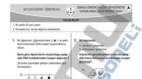MEB LGS Fen Bilimleri Sınav Soru ve Cevapları