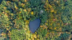 Drone#039;lar sayesinde dünyanın her köşesinden renkli manzaralarla karşılaşmak mümkün. İşte o birbirinden güzel manzaralar.