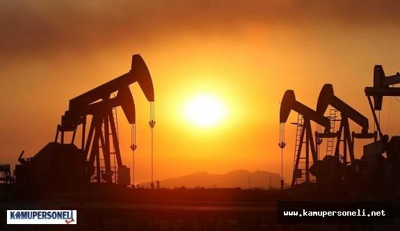 OPEC üyesi ülkeler ortak karar alamadı