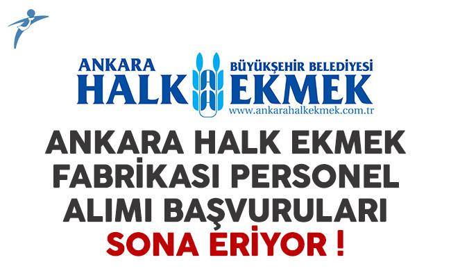 Ankara Halk Ekmek Fabrikası personel alımı başvuruları sona eriyor