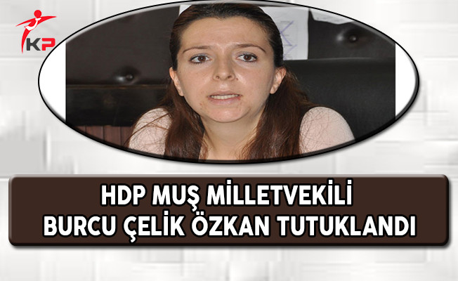 HDP Muş Milletvekili Özkan Tutuklandı !