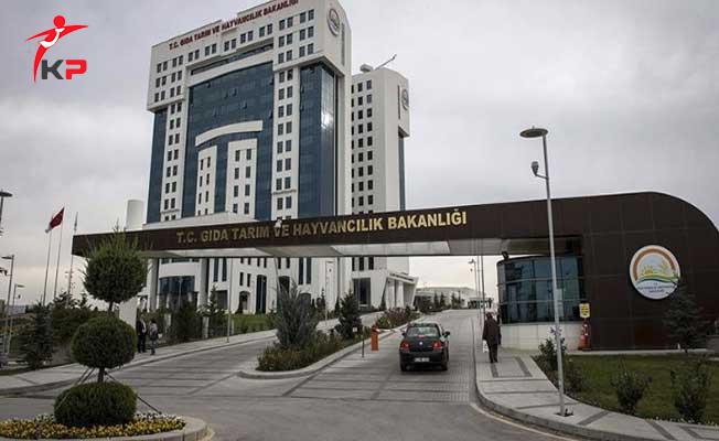 Ön Lisans Adayları GTHB'den İlan Bekliyor !