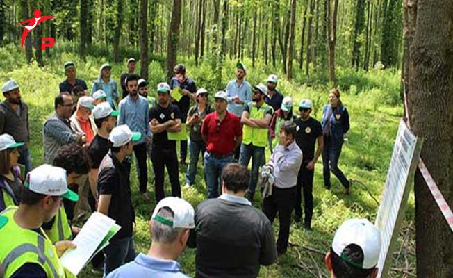 Orman Mühendisleri Merkezi Atamada Hayal Kırıklığına Uğradı !