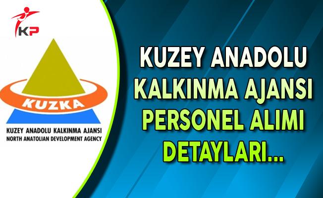Kuzey Anadolu Kalkınma Ajansı Kamu Personel Alımı Başvuru Detayları