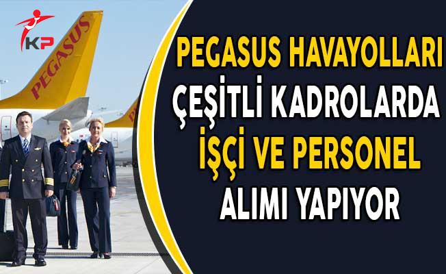 Pegasus Hava Yolları Personel ve İşçi Alıyor!
