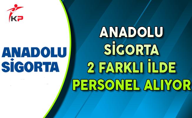 Anadolu Sigorta 2 Farklı İlde Personel Alımı Yapıyor
