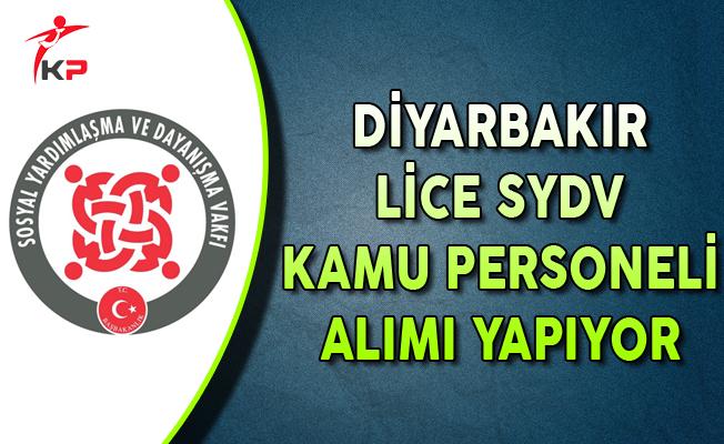 Diyarbakır Lice SYDV Kamu Personeli Alıyor