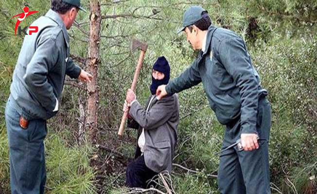 Orman Muhafaza Memurları Yeniden Mülakata Alınacak