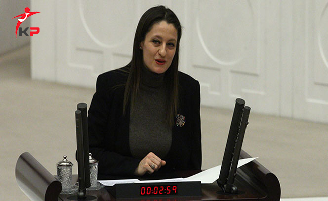 Şafak Pavey'in Milletvekilliğinin Düşürülmesi Kararı Resmi Gazete'de