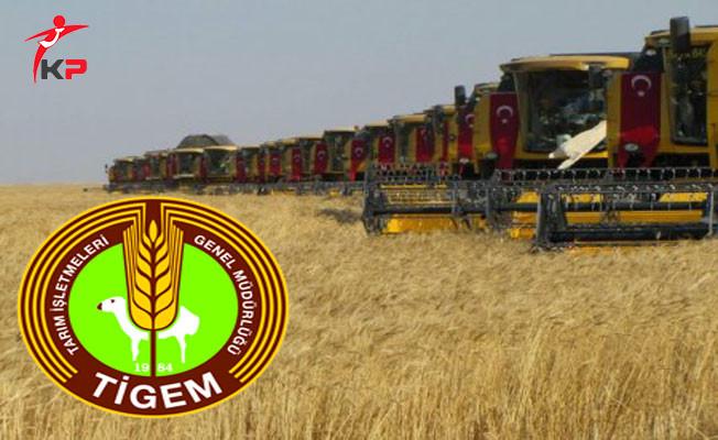 Tarım İşletmeleri Genel Müdürlüğü (TİGEM) Personelinin GYS ve Unvan Değişikliği Yönetmeliği Değişti