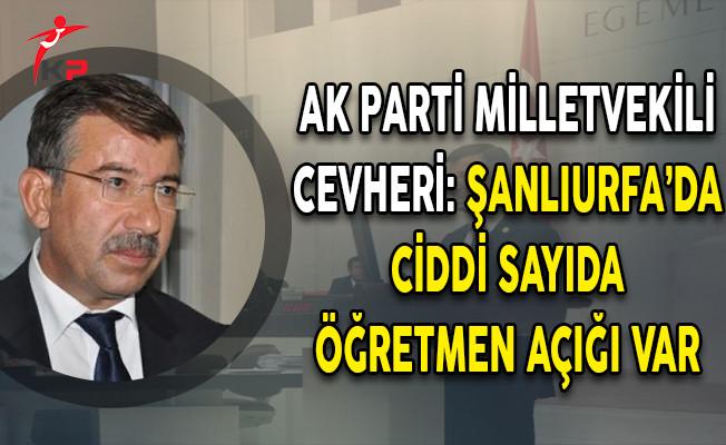 AK Parti Milletvekili Cevheri: Şanlıurfa'da Ciddi Sayıda Öğretmen Açığımız Var