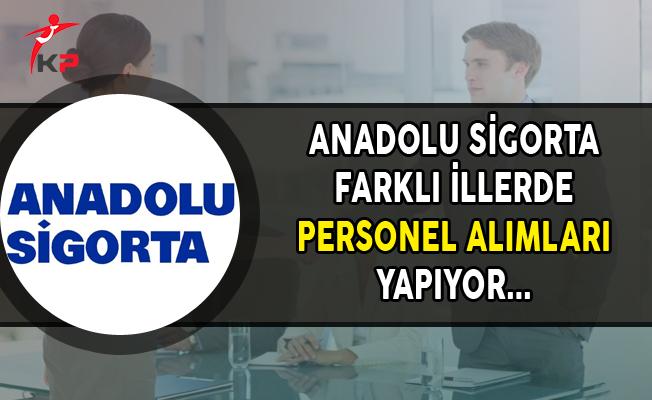 Anadolu Sigorta Farklı İllerde Personel Alımları Yapıyor