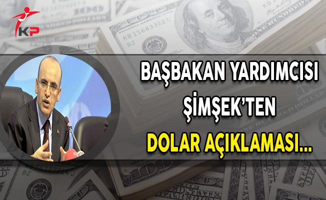 Başbakan Yardımcısı Mehmet Şimşek'ten Dolar Açıklaması