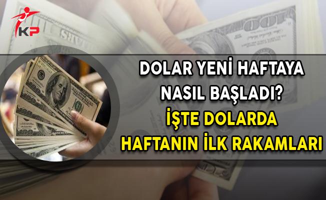 Dolar Haftaya Normal Seyrinde Başladı (Dolar Ne Kadar?)