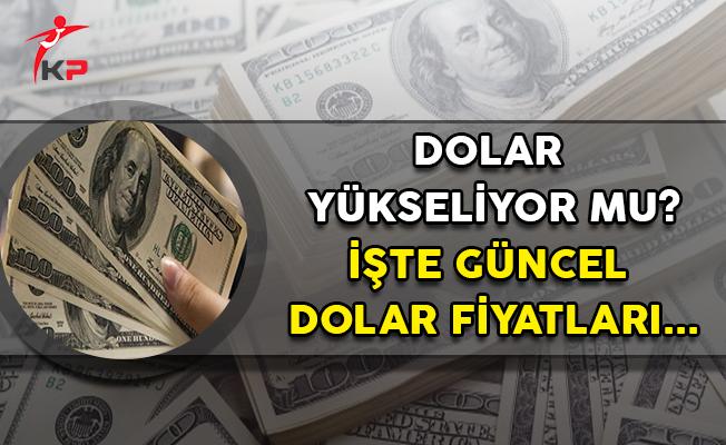 Dolarda Hareketlilik Devam Ediyor Mu? İşte Güncel Döviz Kuru...