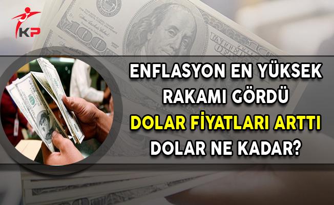 Enflasyon En Yüksek Rakamı Gördü, Dolar Fiyatları Arttı (Dolar Ne Kadar Oldu?)