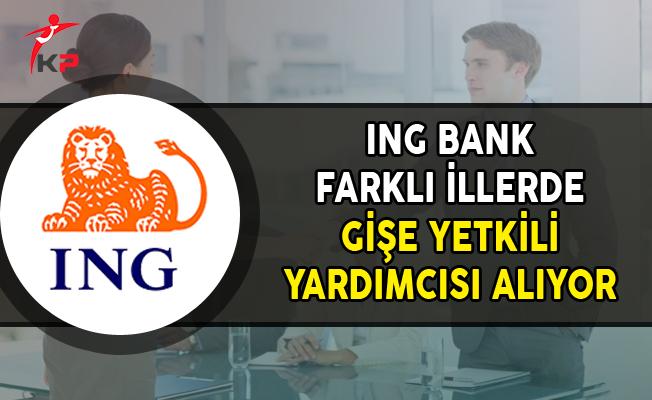 ING Bank Farklı İllerde Gişe Yetkili Yardımcısı Personel Alımları Yapıyor