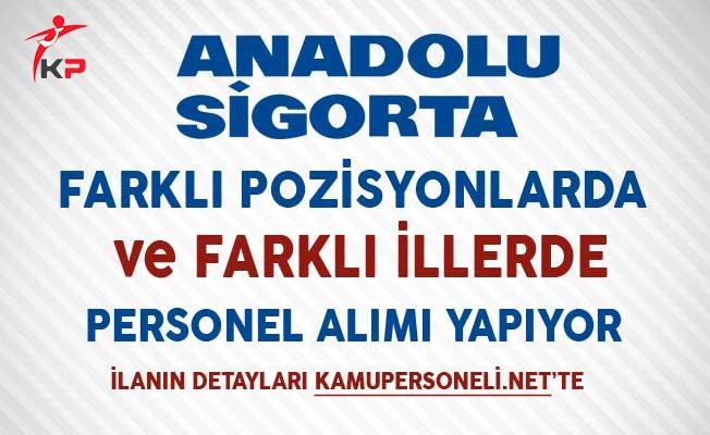Anadolu Sigorta Aralık Ayı Personel Alım İlanı