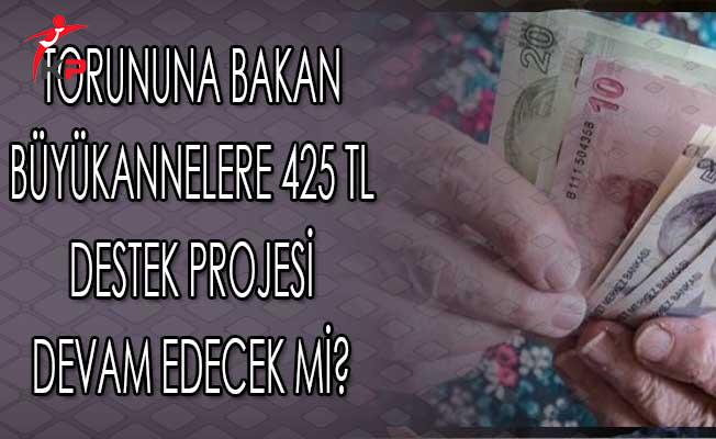 Torununa Bakan Büyükannelere 425 TL Destek Projesi Devam Edecek Mi?