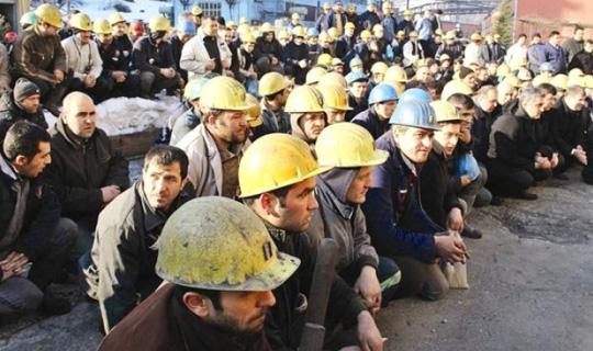 İşte En Fazla Taşeron İşçiyi Kadroya Alan Kamu Kurumları