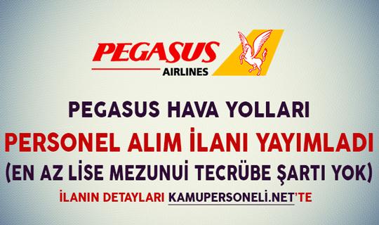 Pegasus Hava Yolları Personel Alım İlanı Yayımladı (En Az Lise Mezunu, Tecrübe Şartı Yok)