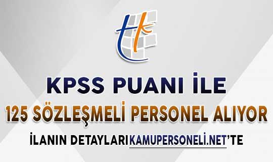 Tapu Kadastro 125 Kamu Personeli Alımı Yapıyor ! Başvurular Başlıyor