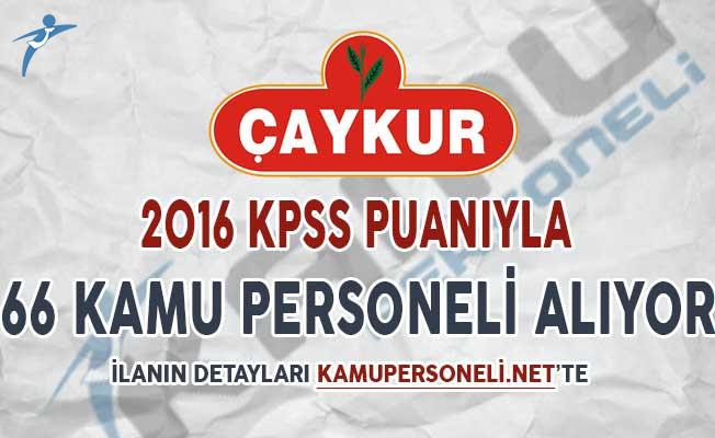 Çaykur 2016 KPSS Puanı İle 66 Kamu Personeli Alımı Yapıyor
