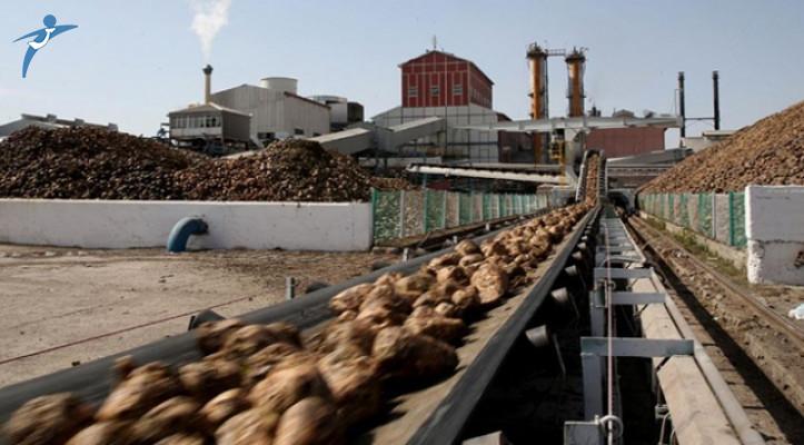 Erzincan ve Erzurum Şeker Fabrikalarının Özelleştirme Kararı Resmi Gazete'de Yayımlandı