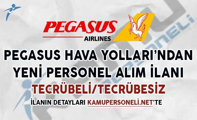 Pegasus Hava Yolları'ndan Yeni Personel Alım İlanı (Tecrübeli/Tecrübesiz)