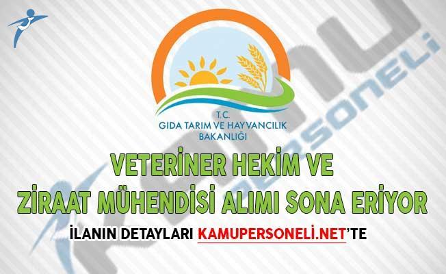 Tarım Bakanlığı Veteriner Hekim ve Ziraat Mühendisi Alımı Sona Eriyor