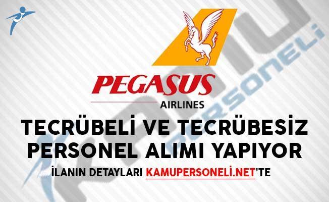 Yeni İlanlar Yayımlandı! Pegasus Hava Yolları Tecrübeli ve Tecrübesiz Personel Alımı Yapıyor!