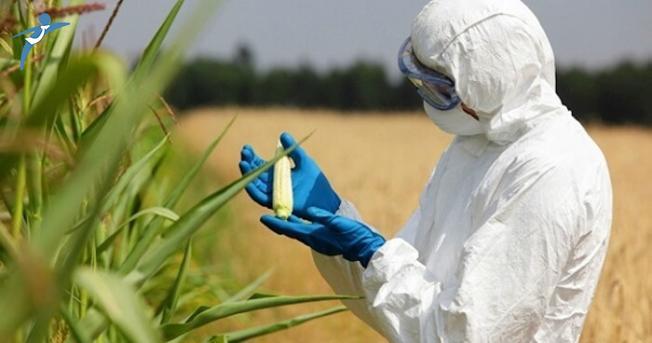 Veteriner Ziraat Gıda ve Su Ürünleri Mühendisi Atamaları Soru Önergesi Oldu