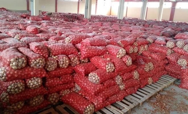 Ankara'nın Gölbaşı ilçesinde bin 300 ton soğan baskını