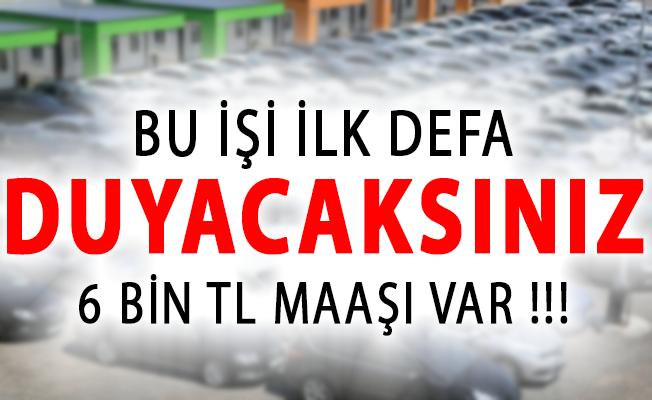 Bu İşi İlk Defa Duyacaksınız! 6 Bin Türk Lirası Maaşı Var