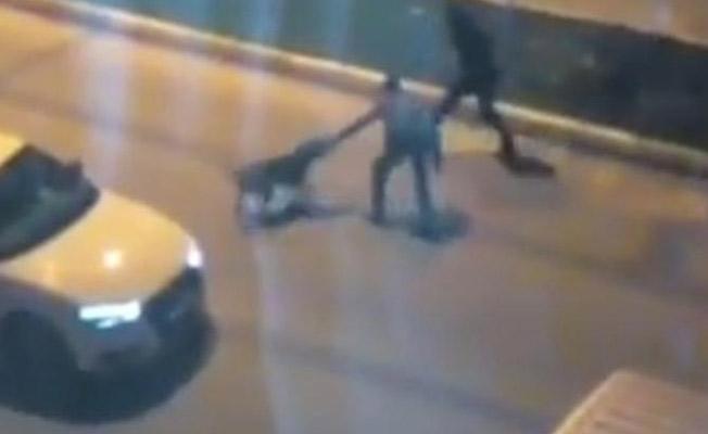 Hayvana Şiddet Bir Kez Daha Gözler Önünde! Sokak Köpeklerine İşkence Yaptılar!