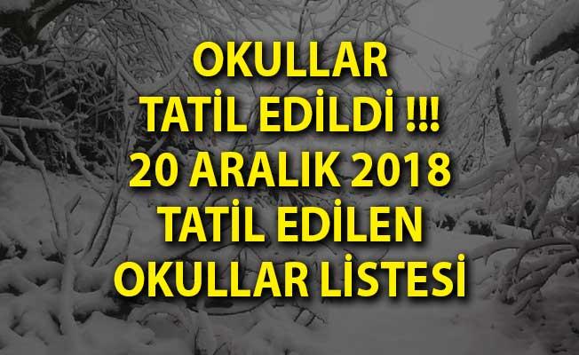 Okullar Tatil Edildi!- Yarın Hangi Okullar Tatil Edildi? 20 Aralık Okul Tatili