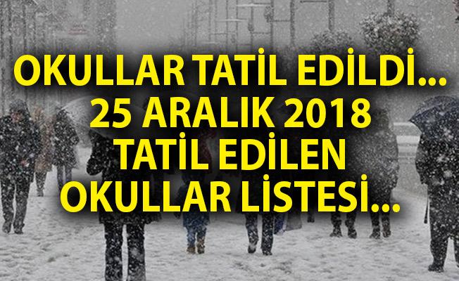 Okullar Tatil Edildi! Yarın Hangi Okullar Tatil Edildi? 25 Aralık Okul Tatili